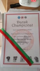 Dansk Champion