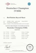 German Champion VDH